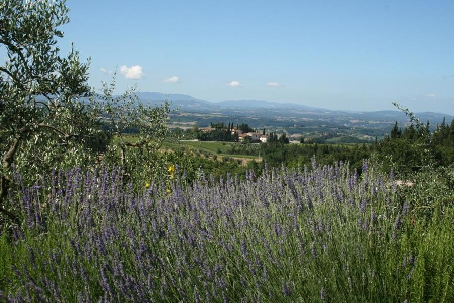 12 - Apartments in hamlets CASTELLINA IN CHIANTI (SI) GRANAIO