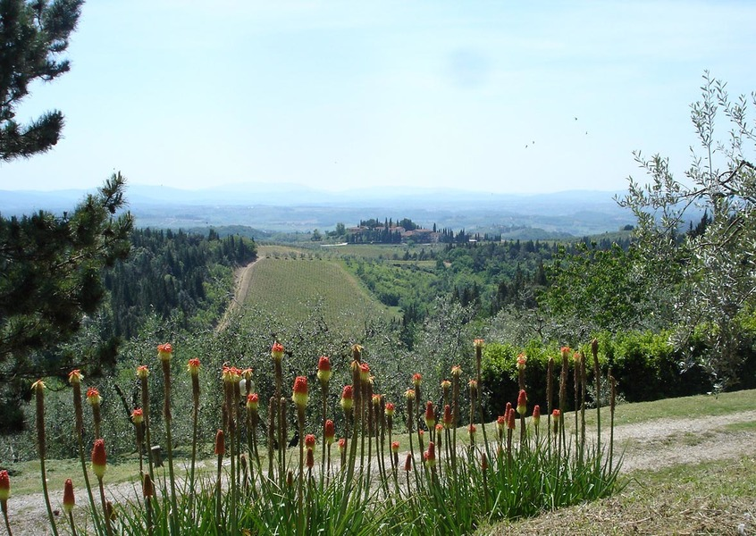 19 - Apartments in hamlets CASTELLINA IN CHIANTI (SI) GRANAIO