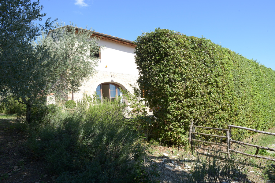 12 - Country houses IMPRUNETA (FI) MEZZOMONTE