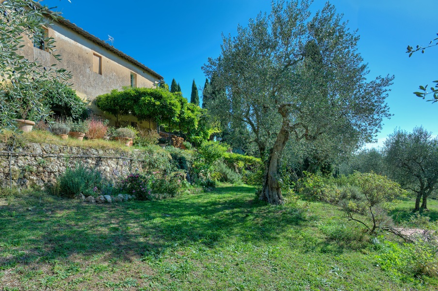 sovicille (05) - Country houses SOVICILLE (SI) ANCAIANO