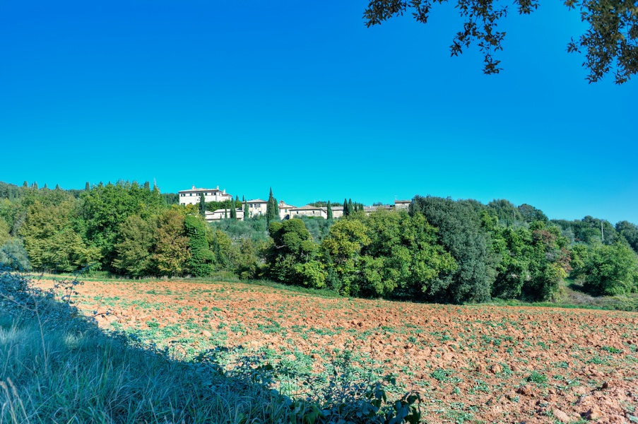 sovicille (41) - Country houses SOVICILLE (SI) ANCAIANO