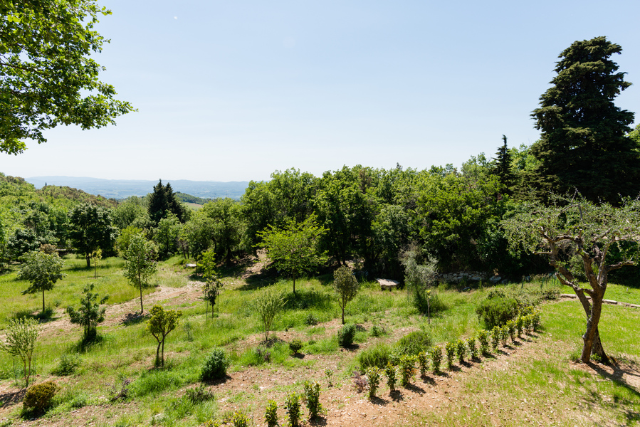 10 - Country houses CASTELLINA IN CHIANTI (SI) MASSETO