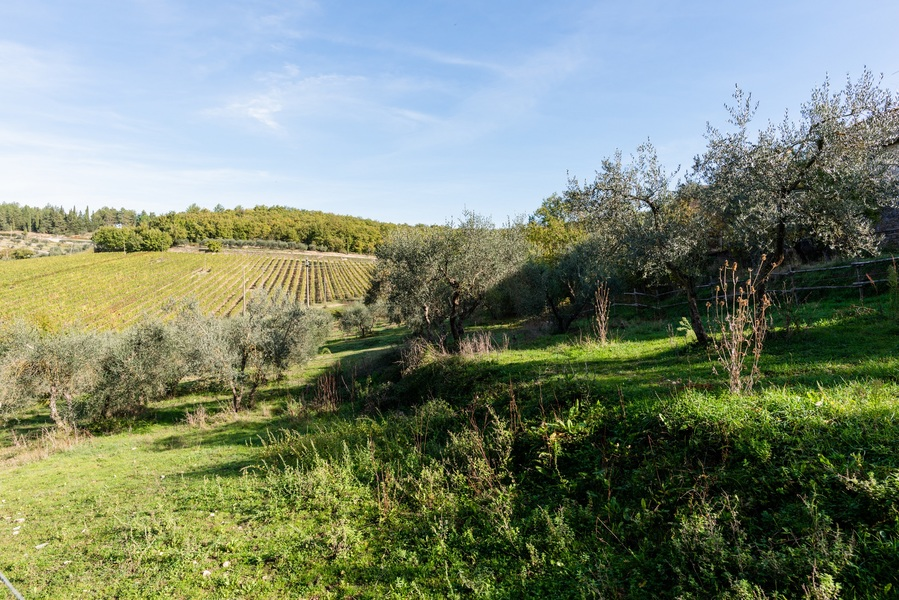 24 - Apartments in hamlets CASTELLINA IN CHIANTI (SI) FONTERUTOLI